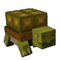 turtlefreake